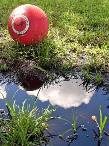 A red ball near a puddle on a field.